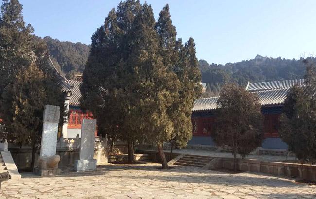 法兴寺寺内环境